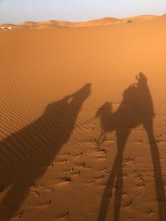 Camel shadows!