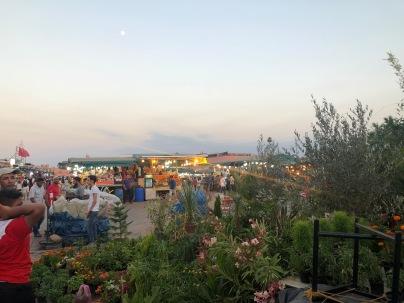 the big market at Jemaa el-Fnaa.